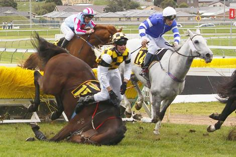 Pride of Westbury crashes and breaks his neck at Warrnambool in 2009 and later euthanized. Photo: Liss Ralston.