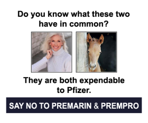 Women, horses expendable to Pfizer, say no to Premarin poster.