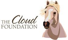 The Cloud Foundation Logo