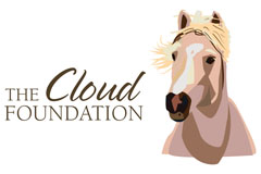 The Cloud Foundation Logo