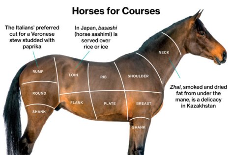 Horse meat cuts mock up. Bloomberg Business Week image.
