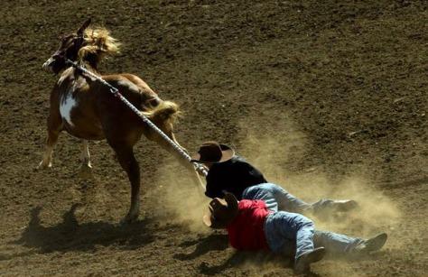 Yakama wild horse race. AP Photo.