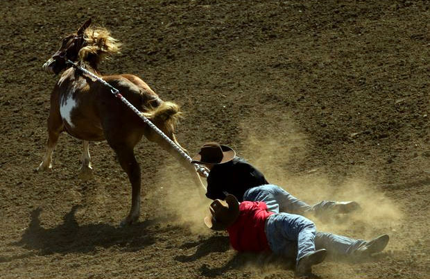 Yakama wild horse race. AP Photo.
