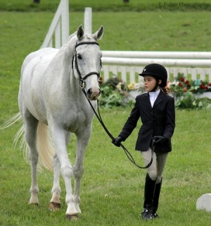 Ellah jogs show horse Silver Lining. Photo by Emily Fisher.