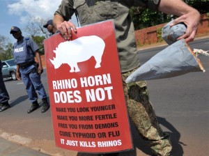 Anti rhino horn poaching poster. Image Credit: Nova Labs. Click for more images and to learn more.