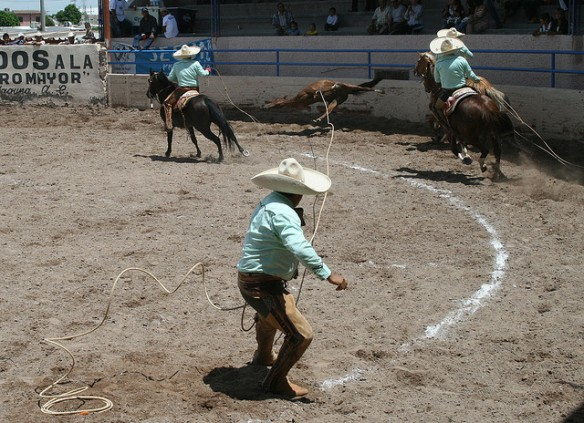 A charro lassoes the front legs of a galloping horse and yanks her off her feet in a horse tripping competition in a rodeo in Mexico. These competitions are now being held in the US. Horse tripping is against the law in 12 States. Source: Flickr.