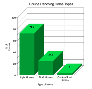 Figure 2 Equine ranch horse types