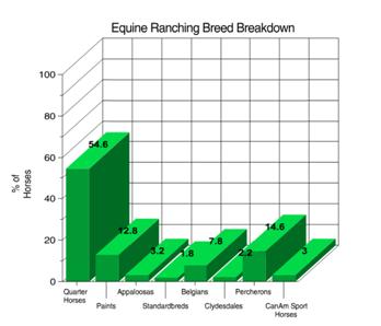 Figure 3 Equine breed breakdown
