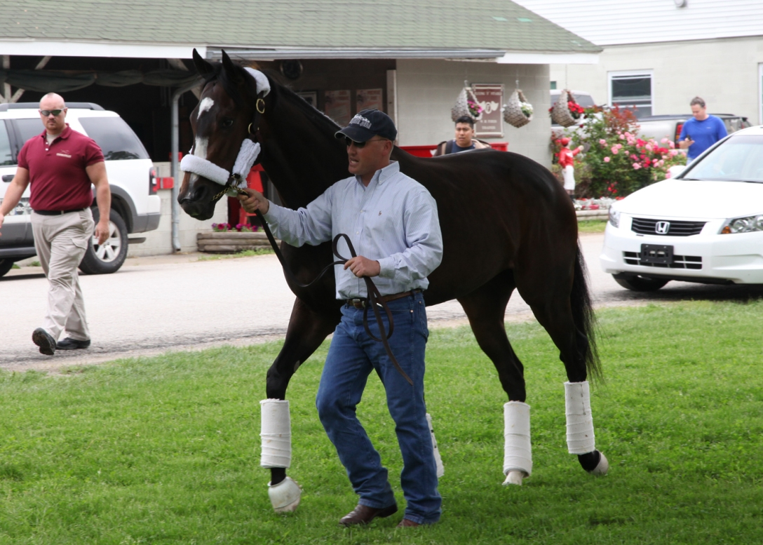 Record-smashing Kentucky Oaks (GI) winner Rachel Alexandra is led to a waiting van by assistant trainer Scott Blasi. Image: Churchill Downs website.