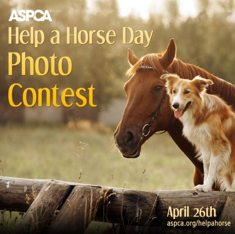 Help a Horse Today artwork. ASPCA.