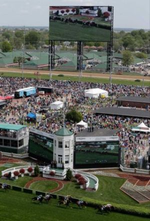 In this May 3, 2014, file photo, fans watch a race on a large video screen before the Kentucky Derby horse race at Churchill Downs in Louisville, Ky. A racehorse died Thursday, May 22, 2014, at Churchill Downs after a freak fall that the trainer blamed on the sound of a starting gate bell blaring on the track's new sound system. The 5-year-old mare Never Tell Lynda was walking toward the paddock on the dirt track when she reared, twisted and fell, hitting her head, said her trainer, Kenneth Wirth. Wirth later said the horse was spooked by what Wirth thinks was the sound of a starting gate bell coming from a commercial on Churchill's massive new video board. The system includes 750 speakers. Photo: Charlie Riedel, AP