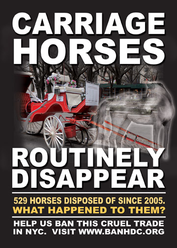 529 Carriage Horses Have Disappeared Since 2005 Banner. BanHDC.org.