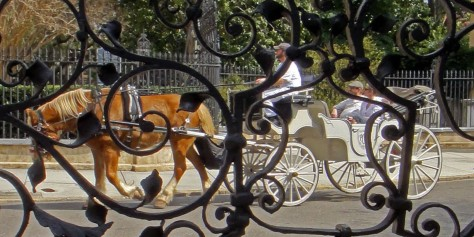 Horse drawn carriage Charleston, SC viewed through wrought iron gate.