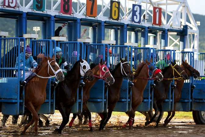 Horses jump out the gate at Penn National racecourse.