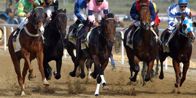 Thoroughbred horse racing, USA.