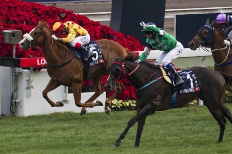 Horse racing in Hong Kong.