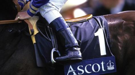 Horse and jockey close up Royal Ascot.