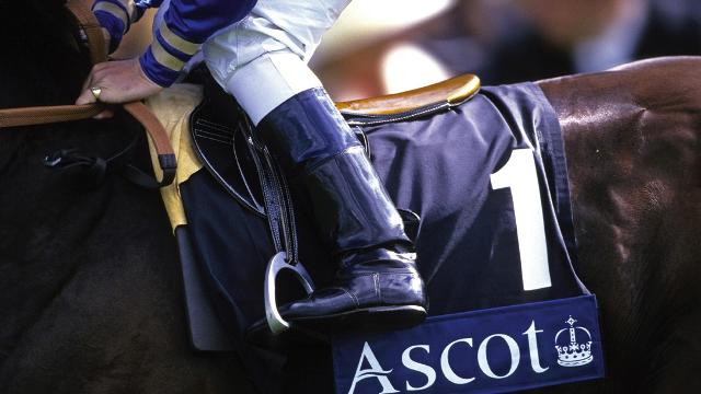 Horse and jockey close up Royal Ascot.