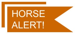 Horse Alert Artwork