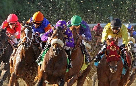 San Joaquin horse racing. Google image.