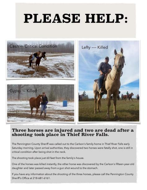 Poster re Pennington County horse murders.