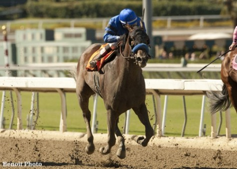 The Bob Baffert trained Secret Compass won the G1 Chandelier before breaking down in the Breeders' Cup Juvenile Fillies, a race for 2 year olds.