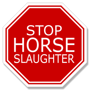Our Horse Slaughter Stop Sign Decal is approximately 4 by 4 inches and is 100% waterproof. Click to order. ­© The Horse Fund.