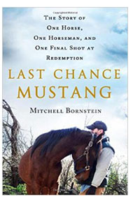 Last Chance Mustang by Mitchell Bornstein Book Cover. Image: Amazon.com.