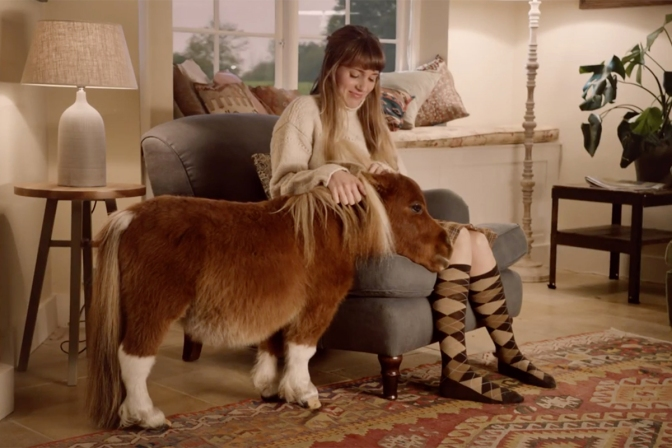 Still image from AmazonPrime miniature horse ad.