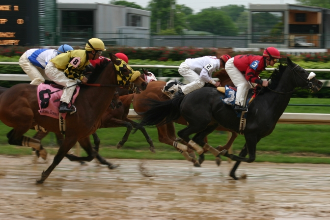 Featured_Horse_race,_Churchill_Downs_2008-04-18_Free_Public_use