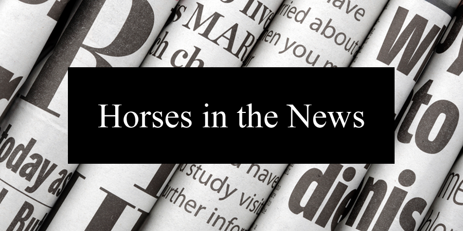 featured_Horses_in_the_News