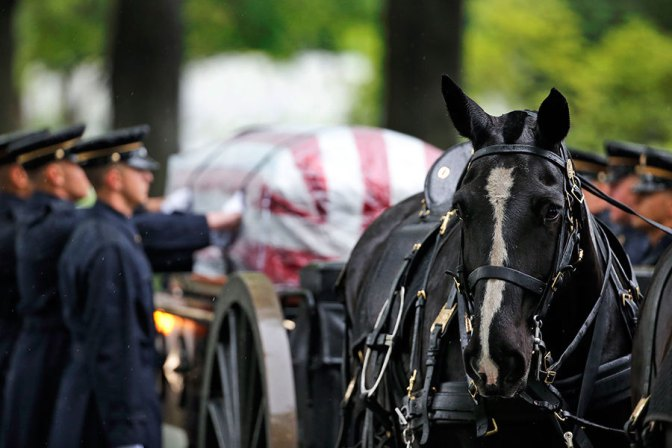 Photo: Horse is used to pull a caisson for burial ceremony of Korean War Veteran