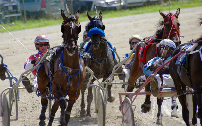 Harness Racing, Maine, by Jody Roberts
