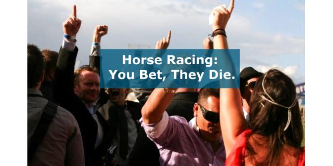 YouBetTheyDie_Gamblers_NZ