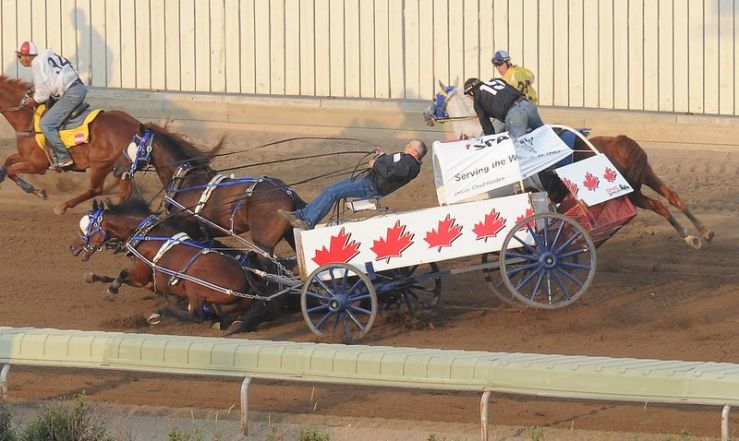 calgary-stampede-chuckwagon-race-kills-3