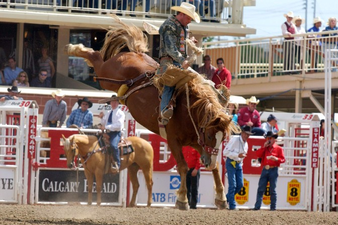 Bronco Busting at the Calgary Stampede. Found at RCI.net.ca.