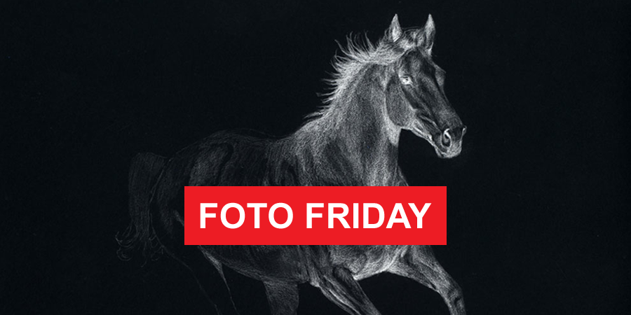FEATURED_Friday_Foto
