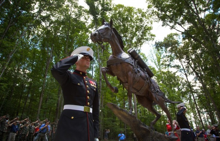 SSgt Reckless Statue dedicated by the US Marines.