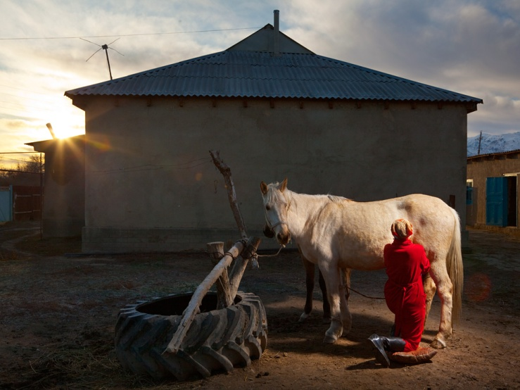 Woman milking a mare in Kazakhstan. Source: National Geographic.