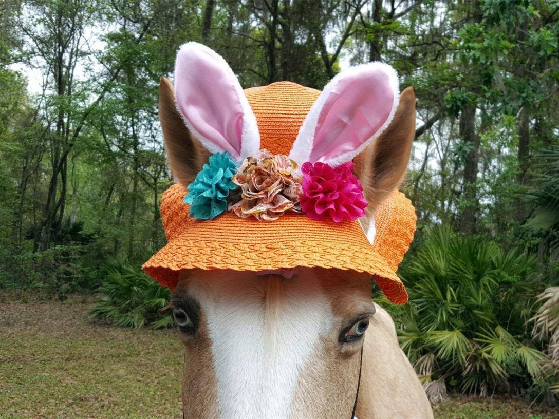 https://www.etsy.com/market/horse_ear_bonnets