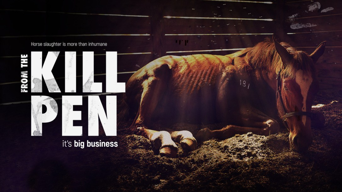 From the Kill Pen (PRNewsfoto/Synergetic Distribution)