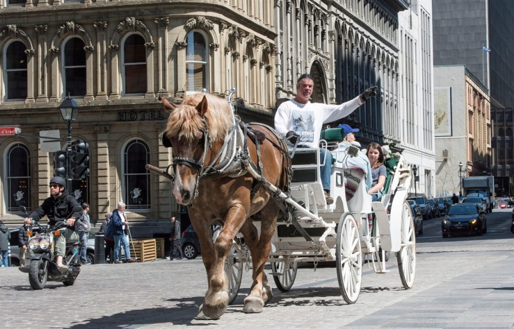 A horse-drawn carriage rides in Old Montreal Wednesday, May 18, 2016 in Montreal. Montreal mayor Denis Coderre announced there will be a one-year moratorium on the carriages following recent accidents. THE CANADIAN PRESS/Paul Chiasson.