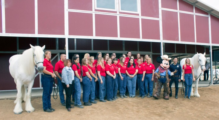 The crew at Disneyland's Circle D Ranch facility in Norco, post for a photo with two of the horses that stay there. Posing with the crew are Mickey Mouse, along with Mary Niven, vice president of the Disneyland Resort (in a light blue coat) and to the right of Mickey is Mikey Trujillo, Disneyland Ambassador. (Photo by Mark Eades, Orange County Register/SCNG)