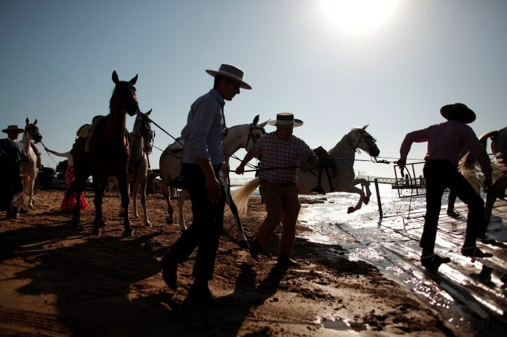 Donana national park, Spain. Pilgrims lead their horses as they make their way to the shrine of El Rocio. Photograph: Jon Nazca/Reuters.