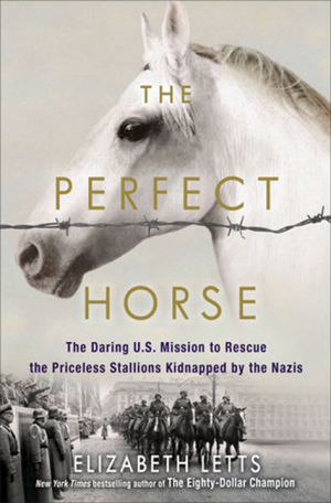 Buy The Perfect Horse now from Amazon.com.