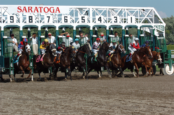 Horses jump out of the starting gate at Saratoga racecourse. Saratoga.com.