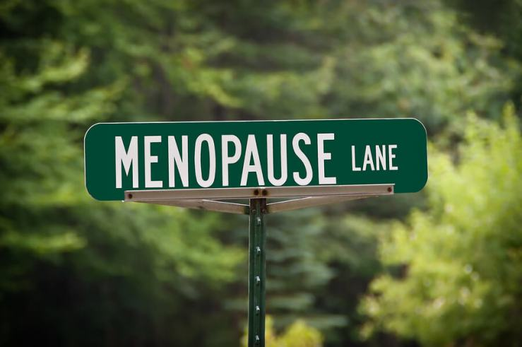 Menopause Lane Street Sign. Author unknown.