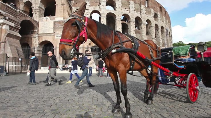 Botticelle horse by the Coliseum in Rome. Shutterstock image.