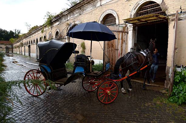 "Angelo Sed, president of the Romans horse-drawn carriage drivers (botticelle) and his horse ""Inventore"" arrive at the stable after a day of work on October 2, 2014 in Rome. The Botticelle are the traditional Roman carriages used by tourists to sight Rome's historical center. ALBERTO PIZZOLI/AFP/Getty Images."