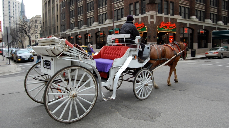 Horse drawn carriage Chicago. Source: WTTW.
